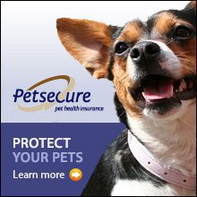 petsecure_revised