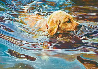 oakleys-first-swim