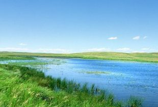 DUC receives $11.6 million in WRRP funds for wetland restoration