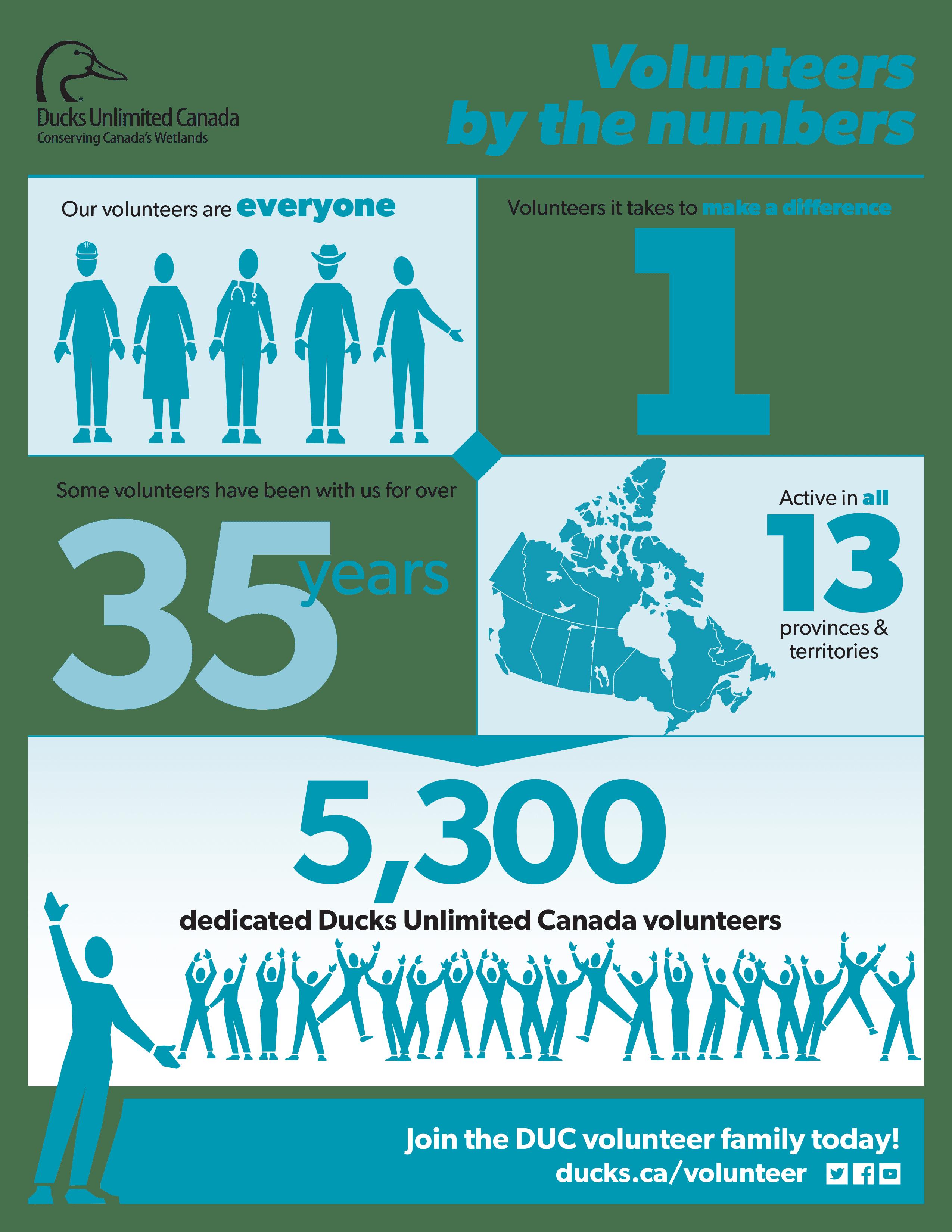 volunteer-infographic_final