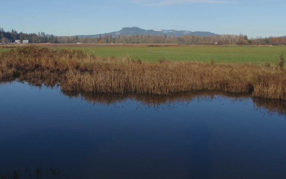 Serpentine Wildlife Management Area