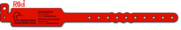 Red Duck Detective Wristband