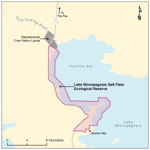 Lake Winnipegosis Salt Flats Ecological Reserve