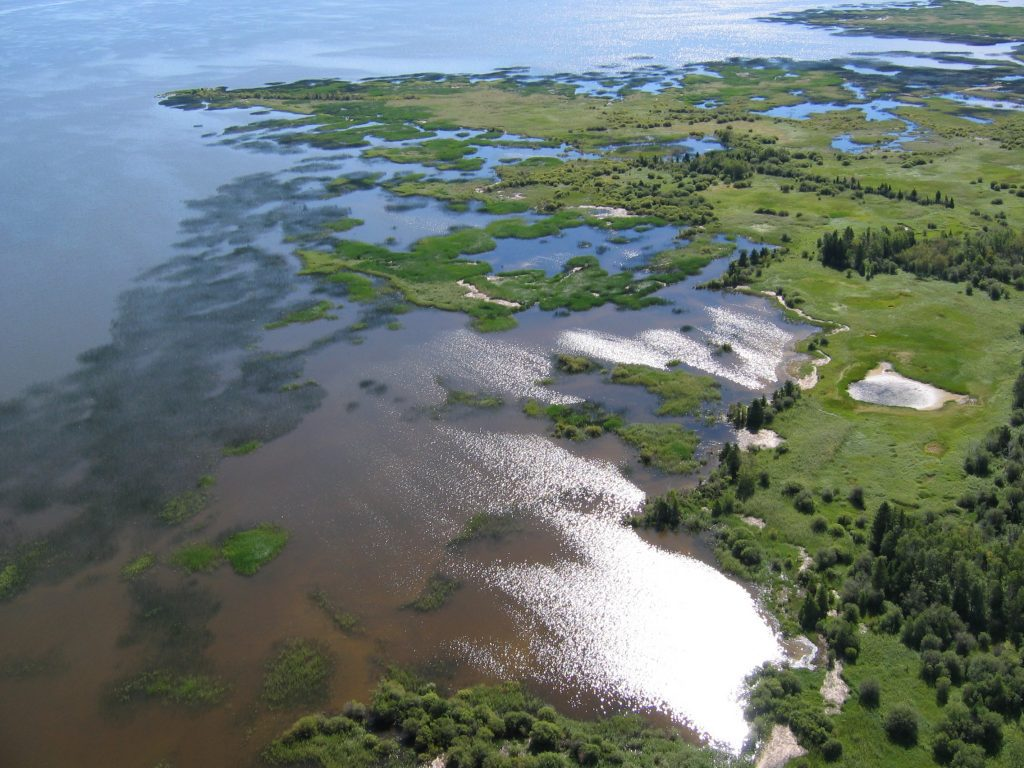 Freshwater coastal wetlands at Lake Winnipegosis Salt Flats Ecological Reserve. © DUC