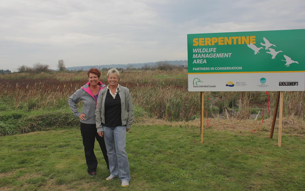 Years of wetland walks inspire help for Serpentine