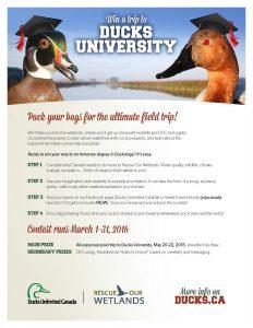 Ducks_University_2016