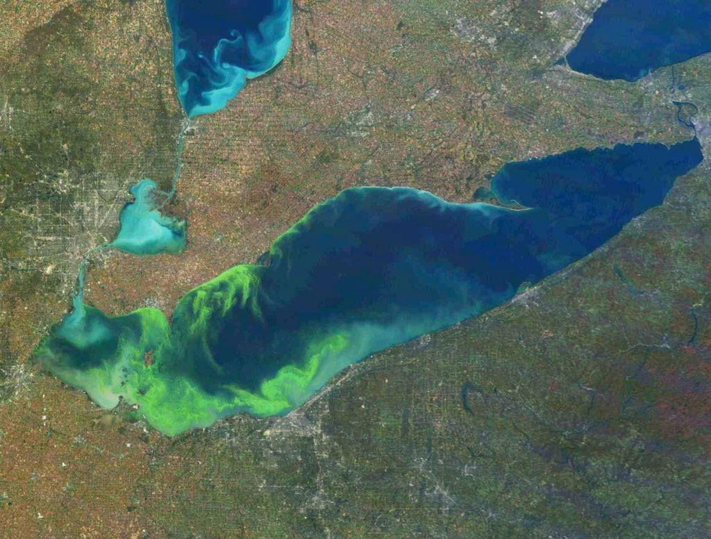 Great Lakes algae blooms