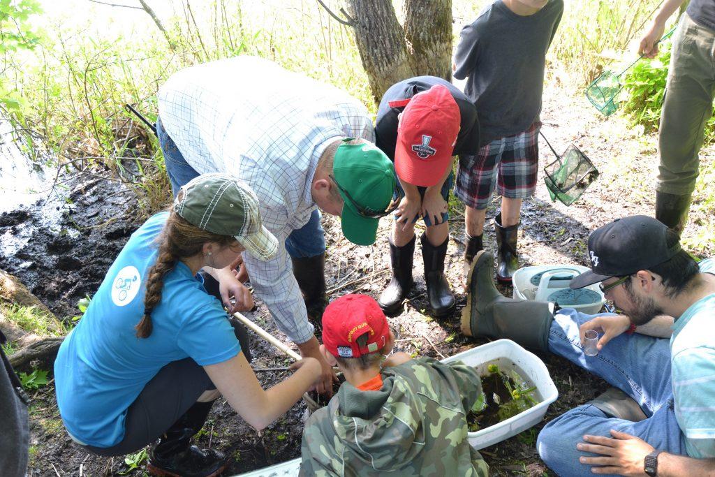 Wetland education field trip