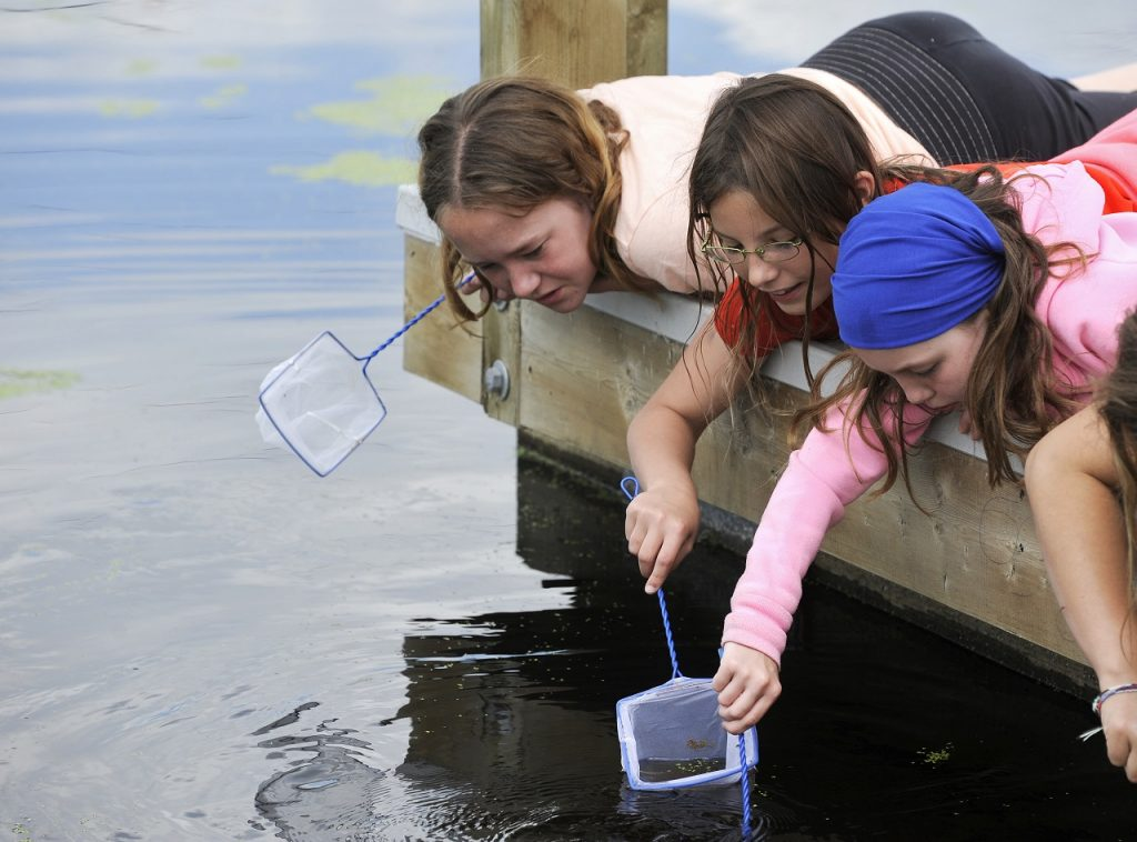 Students critter dipping at Wetland Discovery Days