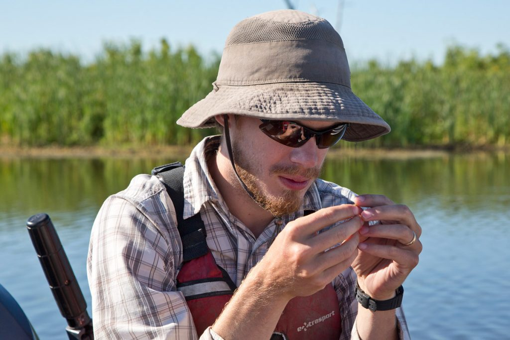 Research at Delta Marsh