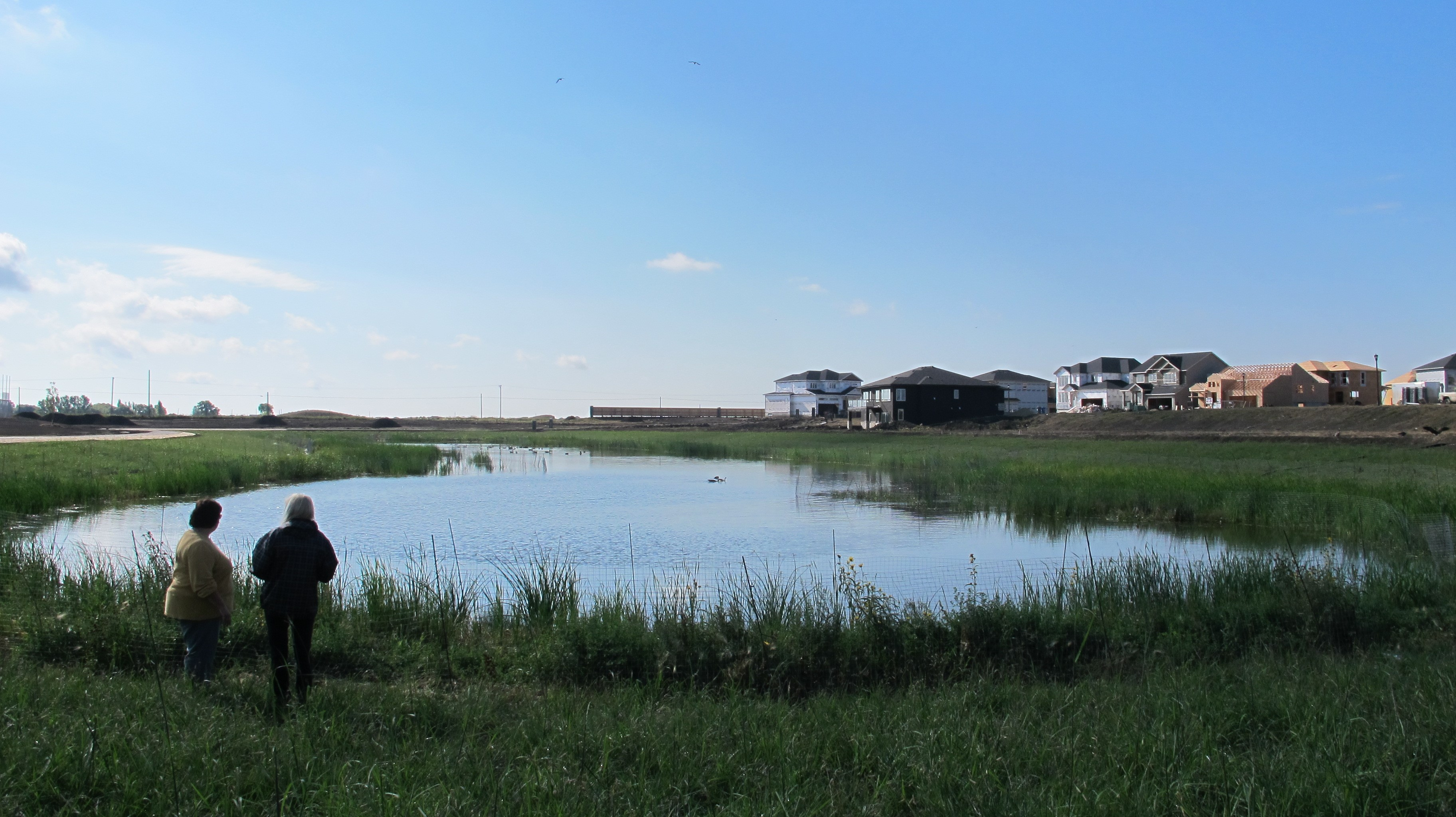 From bathtubs to wetlands