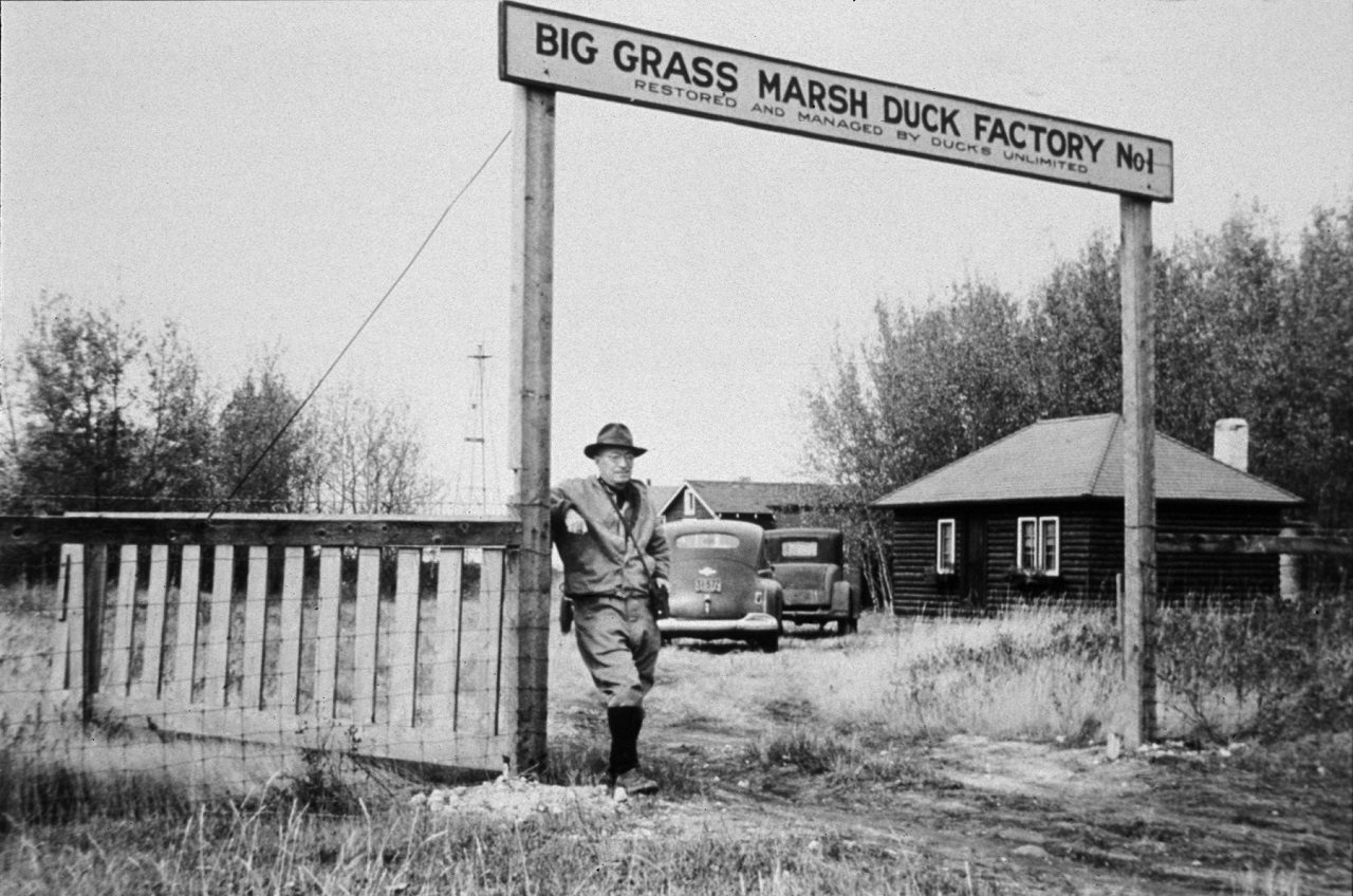DUC's first project, known as Duck Factory No. 1, located at Big Grass Marsh, Manitoba. ©DUC