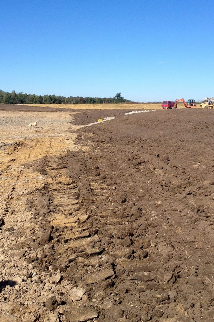 Work to transform a poorly drained area of the farm into a large, 10 acre wetland, begins.