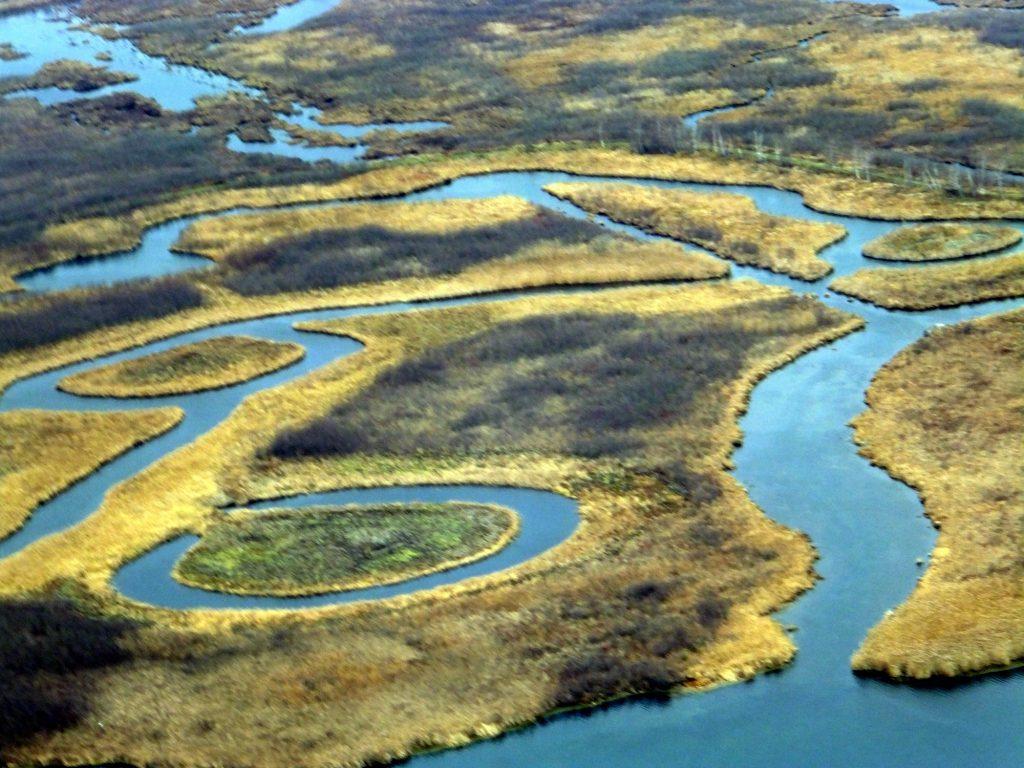 Cooper Marsh aerial view