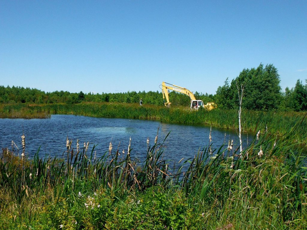 Over the span of a decade, 360 acres (145 hectares) of wetlands have been restored at the 5th Canadian Division Support Base Gagetown.