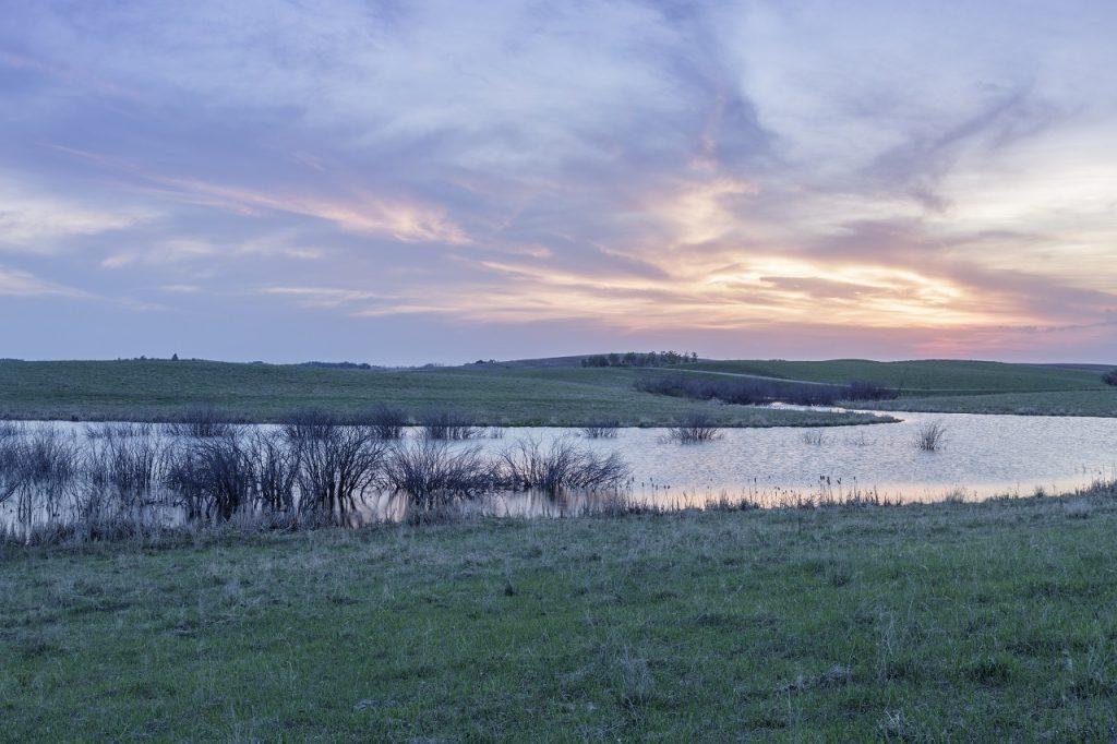 Rescue Our Wetlands - Prairie Region