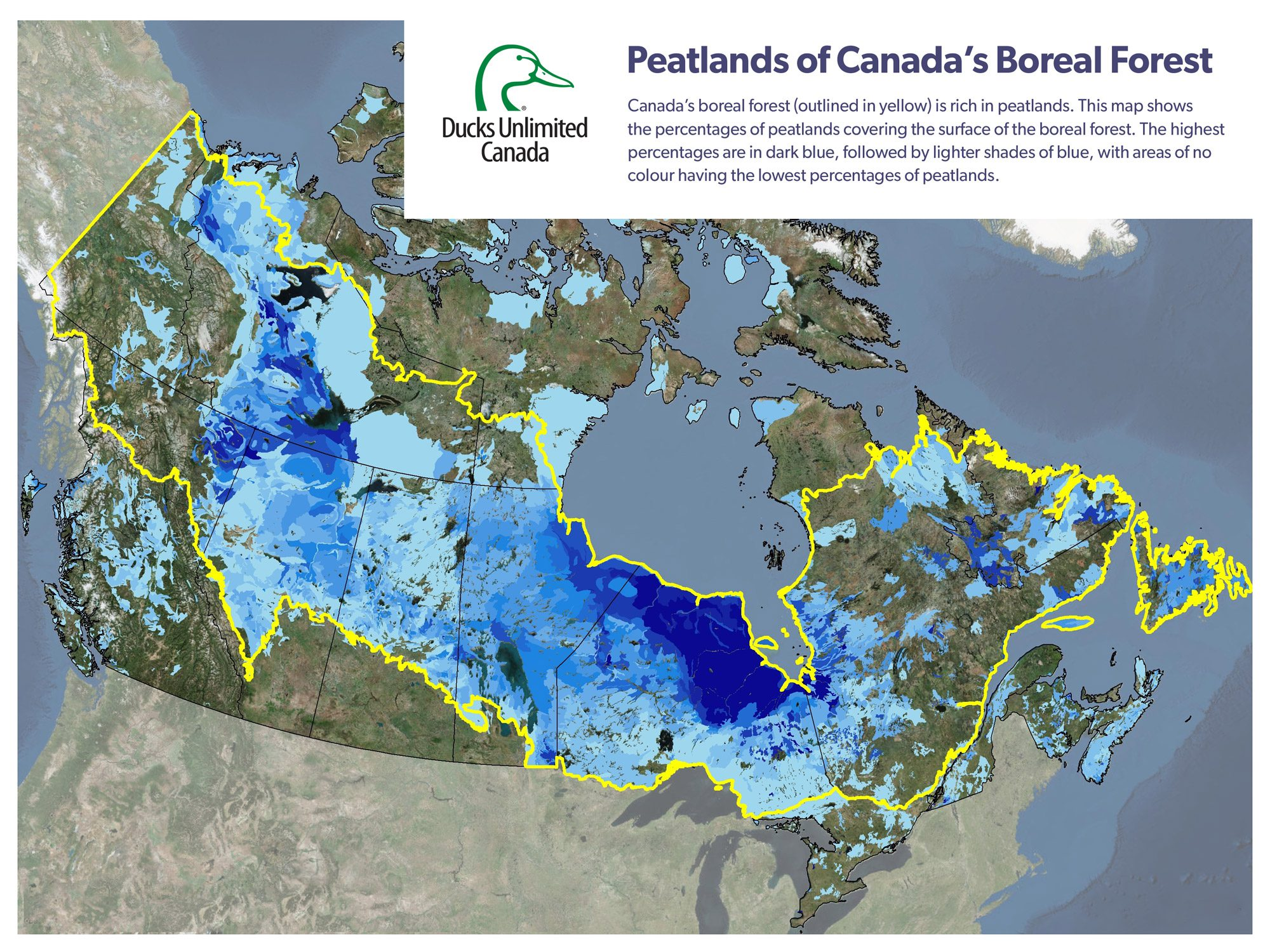 Plumbing the depths of Canada's peatlands – one of the world's largest carbon sinks