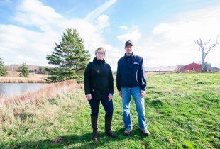 Wetlands: a valuable farmhand