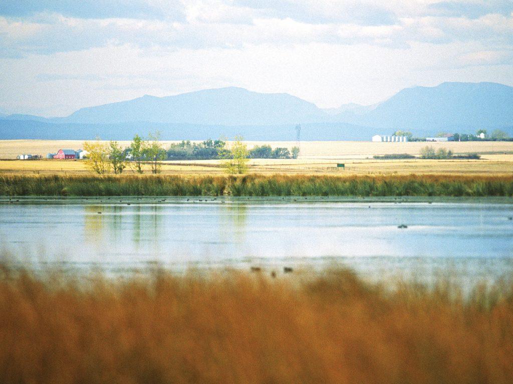 Green infrastructure in Alberta