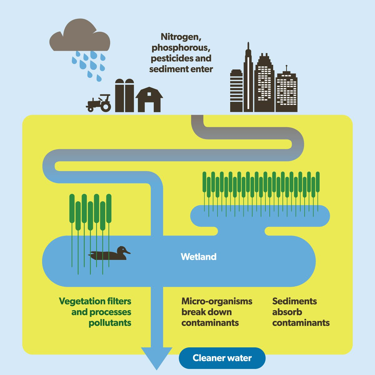 Green infrastructure infographic