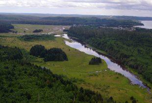 New Tide and Local Partnership Restores Delkatla Slough's Upper Marsh