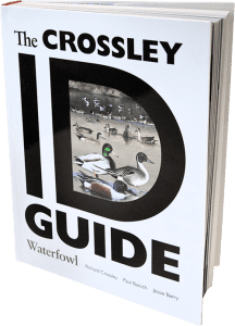 The Crossley ID Guide: Waterfowl is available now through DUC