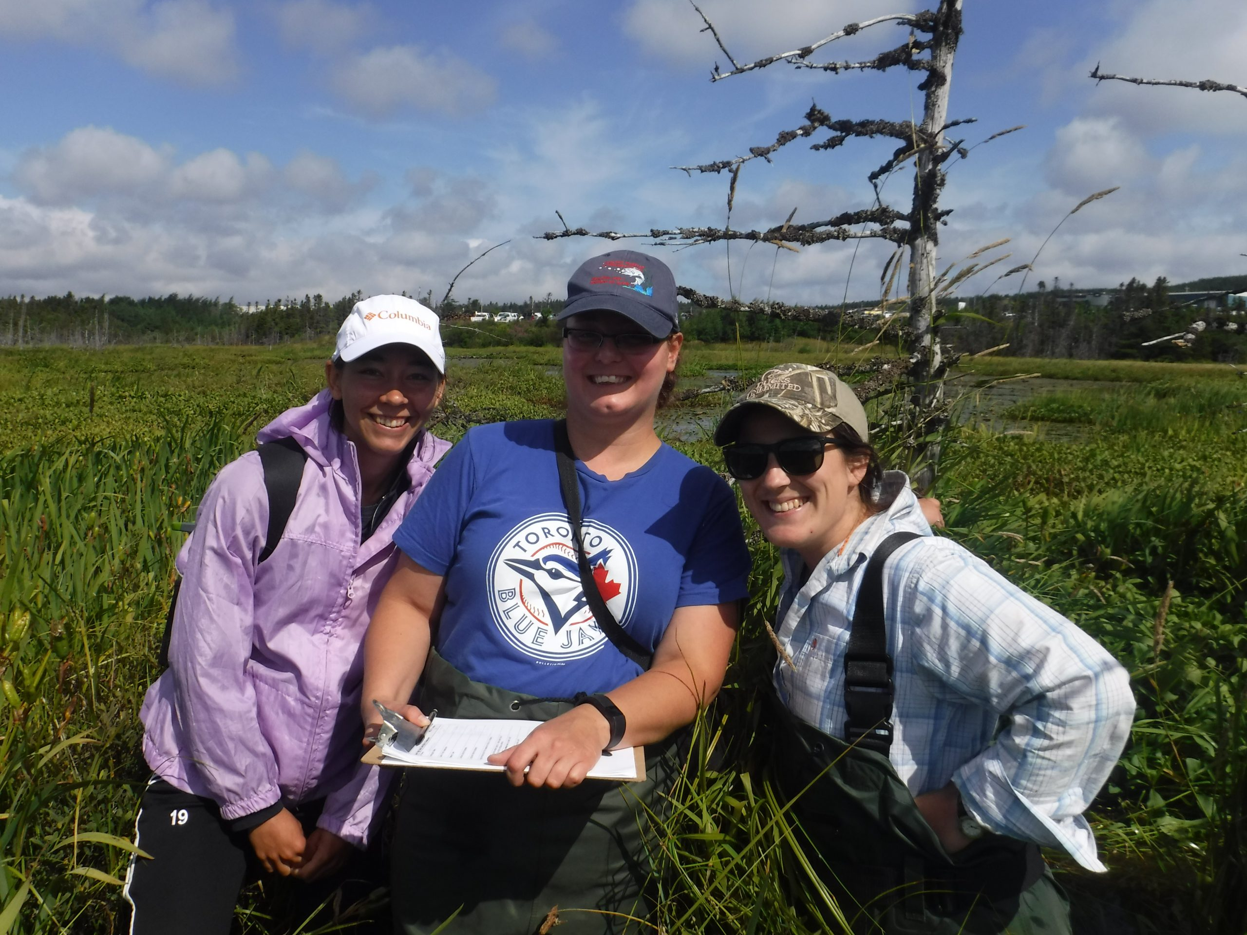 Befriending Lundigrans Marsh