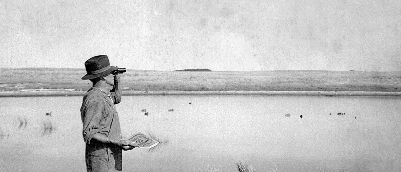 An early Keeman counts ducks.