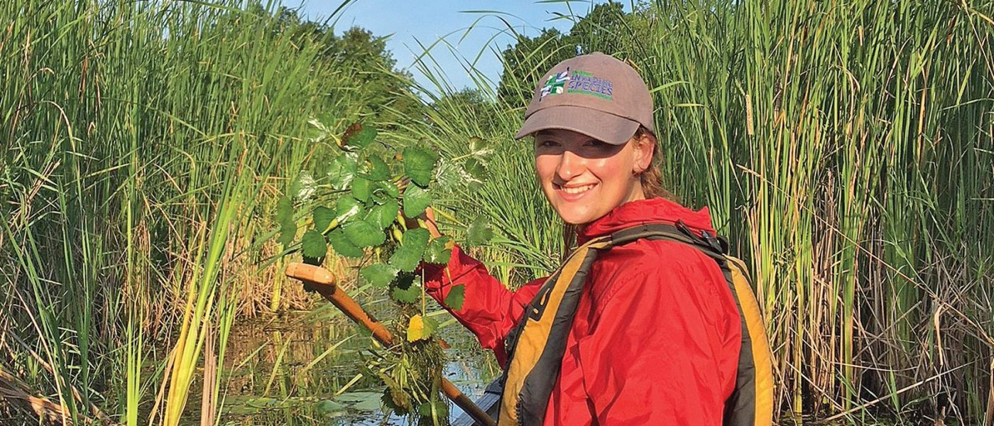 Lilly Auty pulls invasive European water chestnut along the shores of Wolfe Island near Kingston.