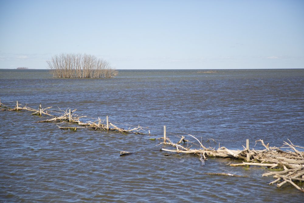 Flooding of land near the Quill Lakes.