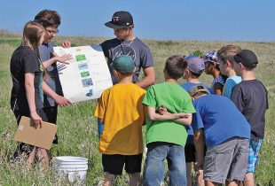 What happens when your classroom is a wetland?