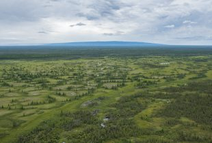 Ducks Unlimited Canada applauds the protection of critical Edéhzhíe wetlands as part of new Indigenous Protected Area