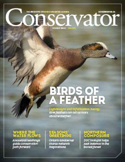 Conservator Magazine