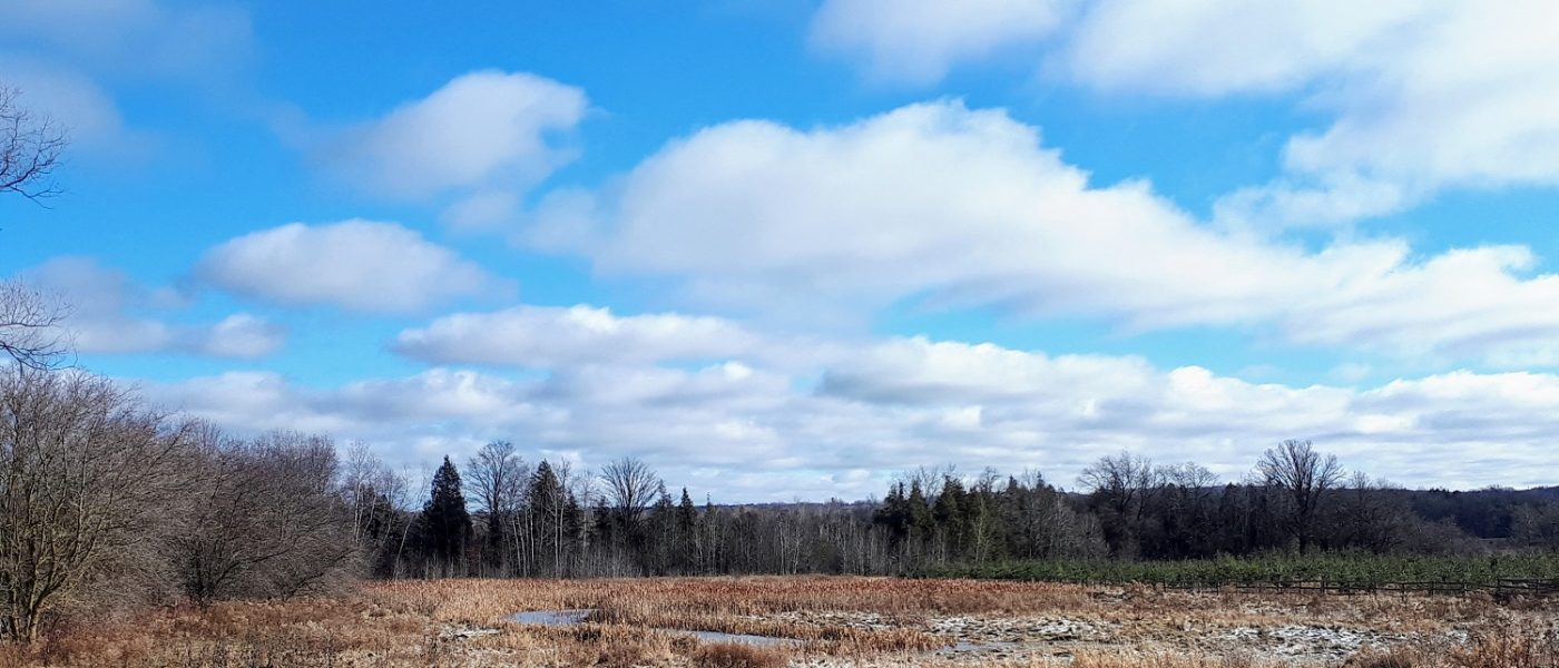 The Clark farm stands in stark contrast to a teeming 400-series highway just a few kilometres away.