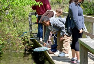 Five tips for outdoor fun with kids