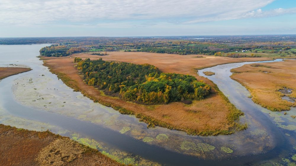 Clark Island coastal wetland on Lake Ontario.