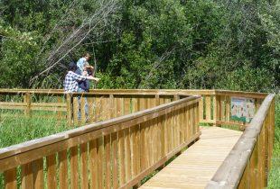 Wetland interpretive boardwalk opens in Peace Country