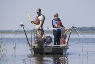 Fishing for data at Delta Marsh