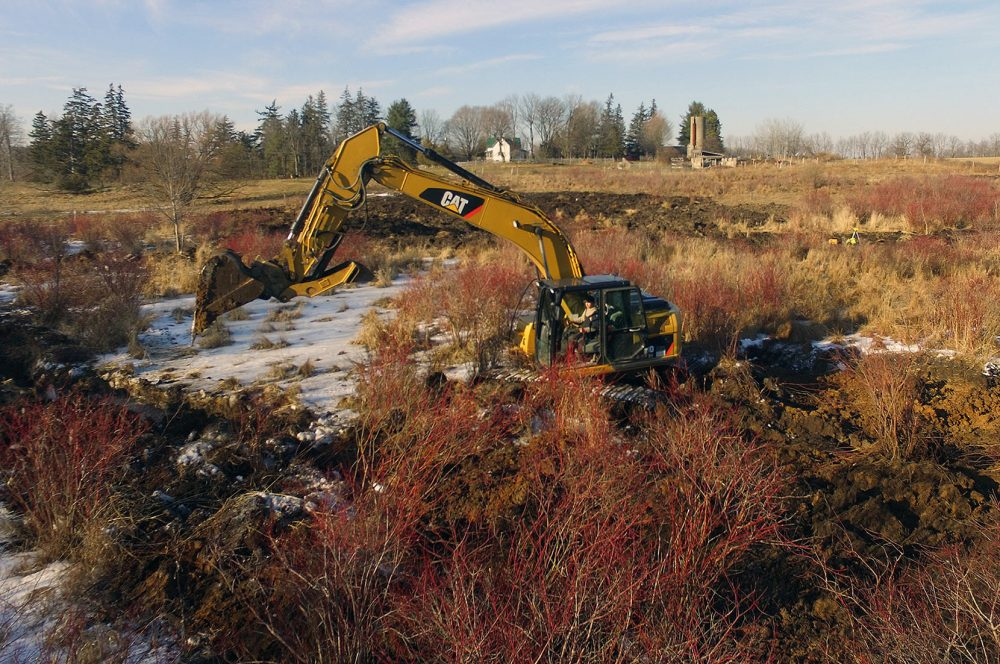 FRAMED BY THE TRIBE FAMILY HOMESTEAD, NICK SWEAZEY DIGS AMONGST THE RED SCRUBBY BRUSH, CLOSE TO THE BANKS OF BIG CREEK.
