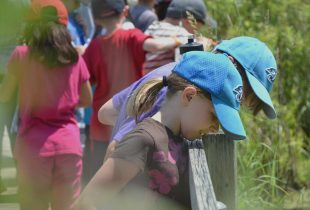 Outdoor learning for more Ontario students