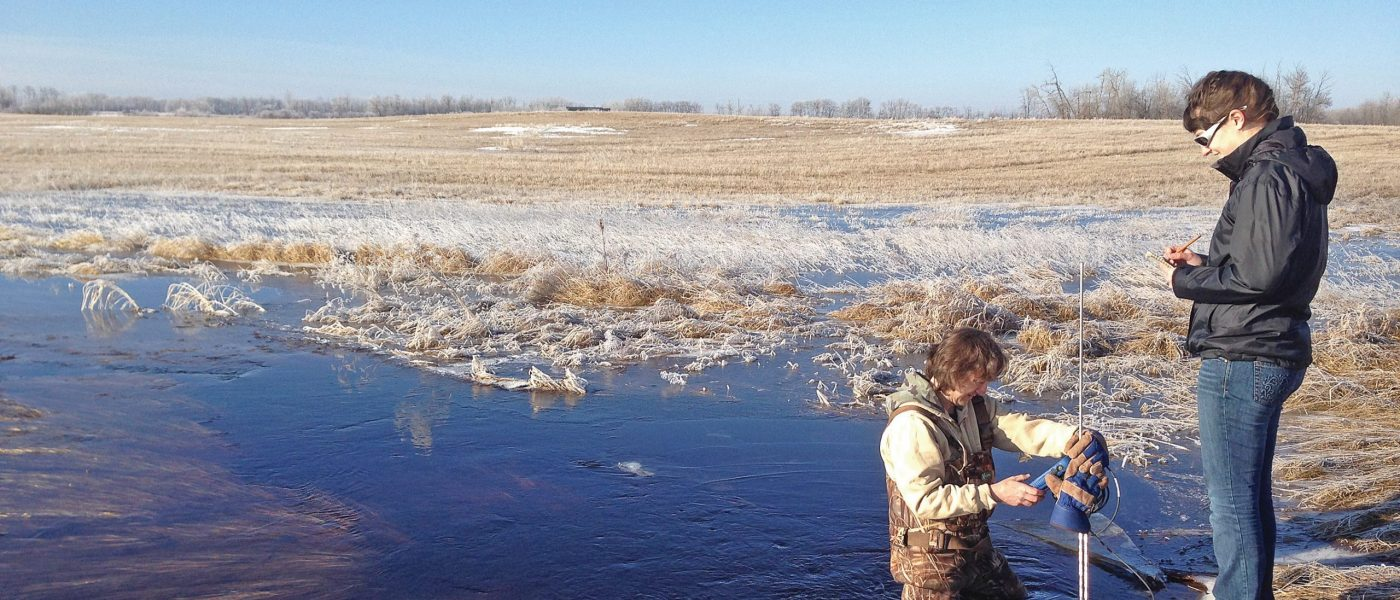 Research scientist Pascal Badiou, in prairie marsh.