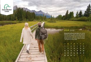 2019 Desktop Calendar Downloads