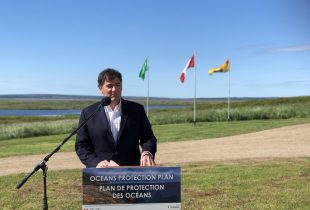DUC receives more than $1 million in funding through federal Coastal Restoration Fund