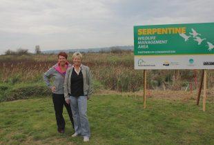 Years of wetland walks inspire help for Serpentine