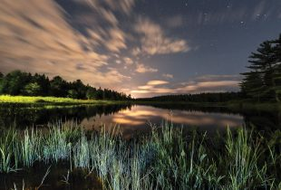 Photo essay: the diversity, beauty and power of wetlands