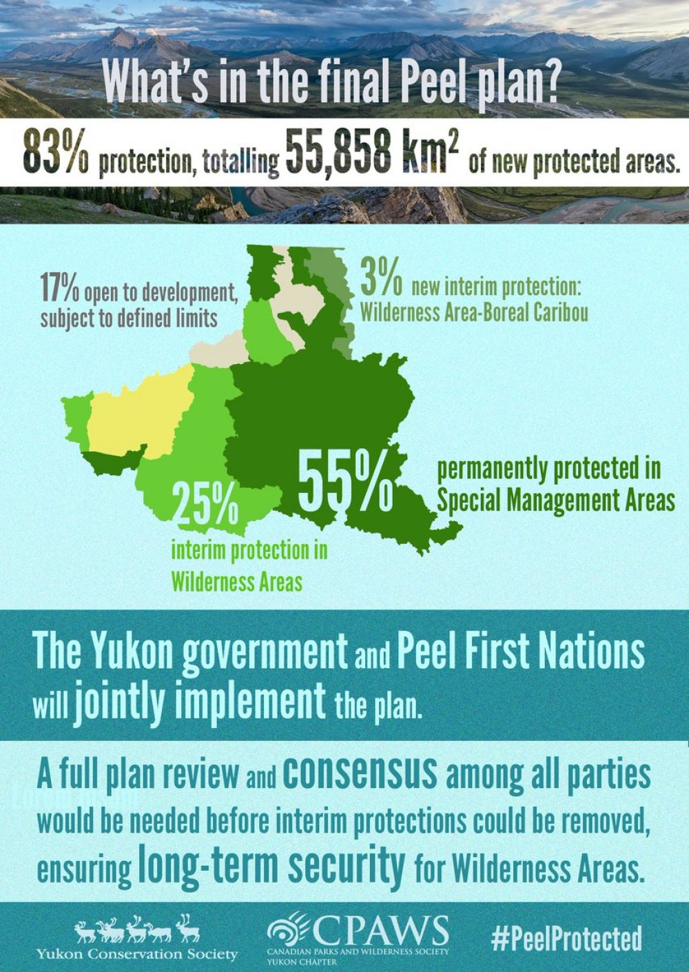 What's in the Final Peel Plan infographic