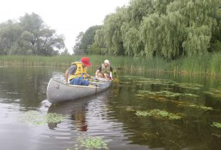 How we faced down an invasive plant that threatened the Rideau River