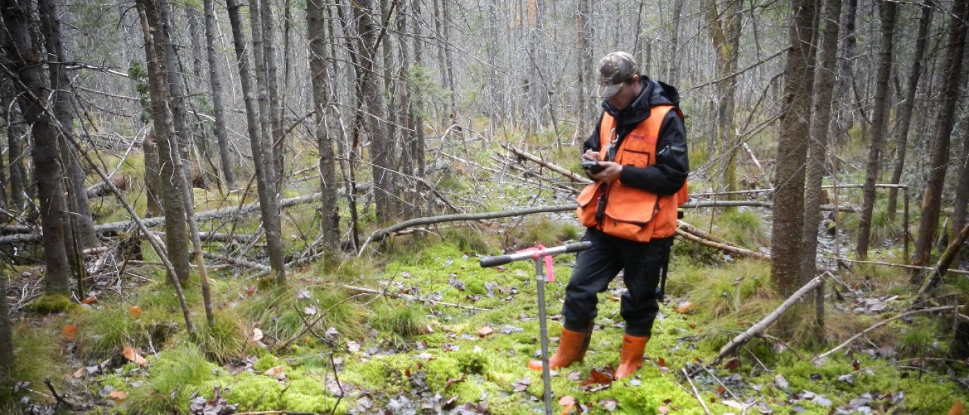 DUC researcher conducts wetland mapping in Quebec. A complete wetland inventory will help us understand our changing landscape and protect the wellbeing of our natural spaces.