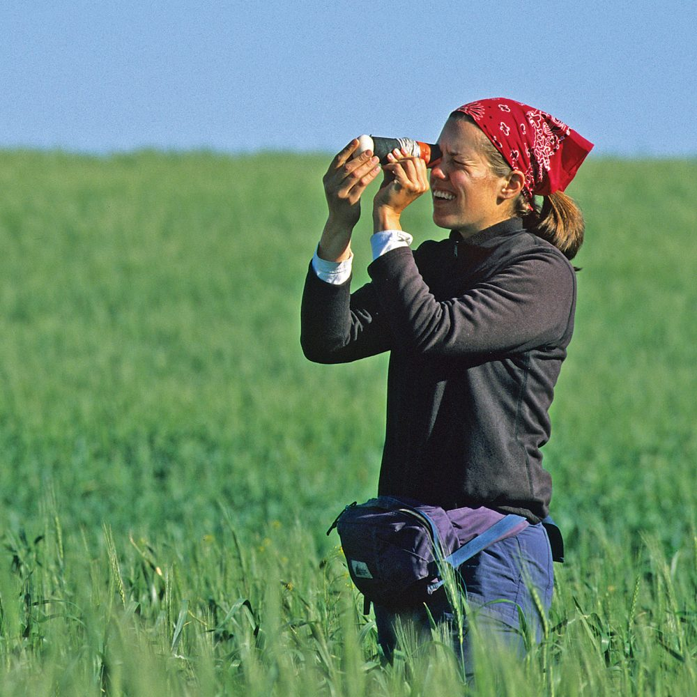 A waterfowl biologist uses a field candler to see embryo development.