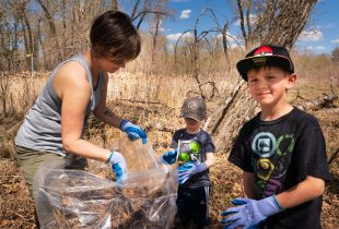 Spring clean-up plants seeds of conservation